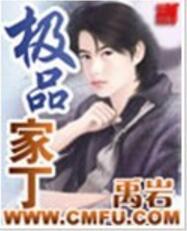 《极品家丁》- 作者:禹岩;久久小说吧,久久小说下载